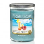 Large 2-Wick 22 oz. Tumbler - Bahama Breeze™