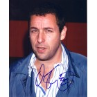 Adam Sandler autographed 8x10 portrait photo