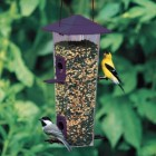 Cherry Valley Songbird /Thistle Feeder 2.5 Lb Seed Capacity
